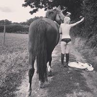 horse lauren