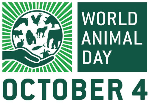 world animal day_edited